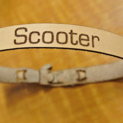 Laser Engraved Pet Collar